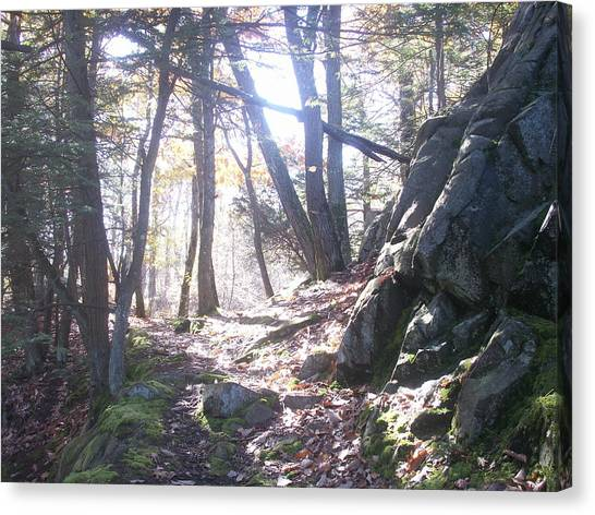 A Path Once Travelled Canvas Print