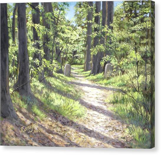 A Path Well-travelled Canvas Print by Joseph Carragher