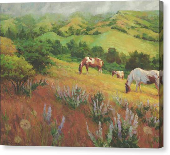 Rolling Hills Canvas Print - A Peaceful Nibble by Steve Henderson