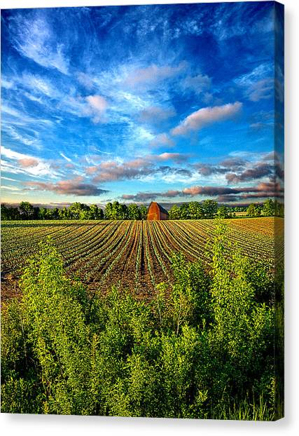 A Perfect Beginning Canvas Print