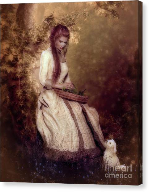 Maltese Canvas Print - Lost In Thought by Shanina Conway