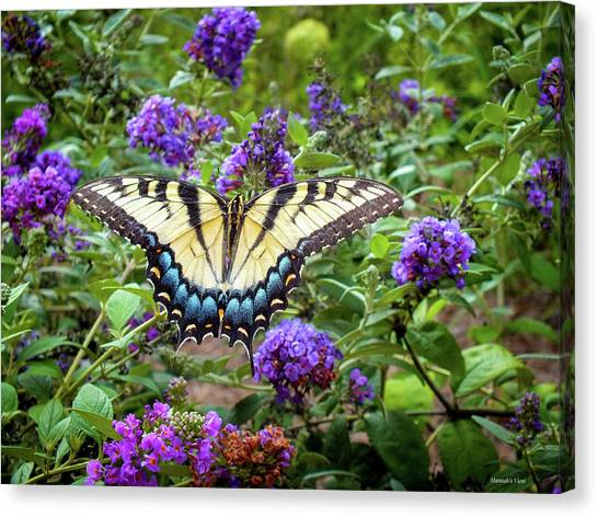 A Perfect Match  Canvas Print