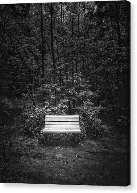 Black Forest Canvas Print - A Place To Sit by Scott Norris