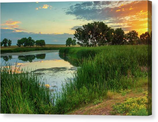 A Portrait Of Summer Canvas Print