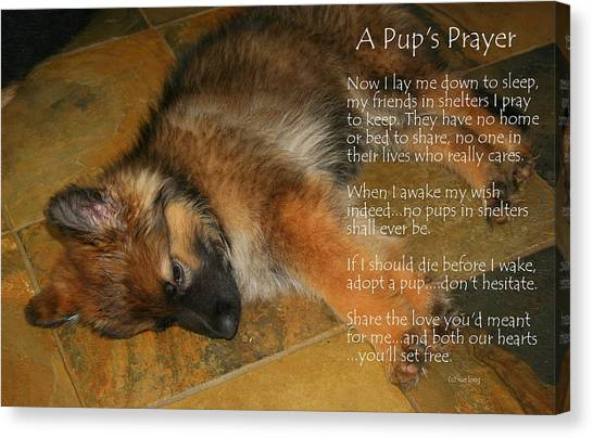 A Pup's Prayer Canvas Print