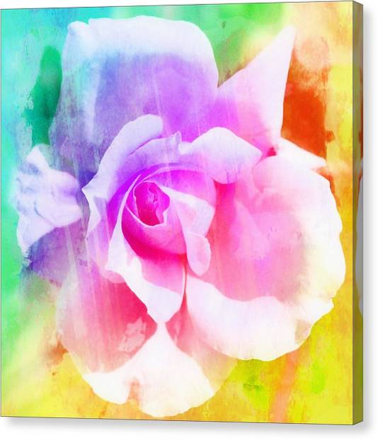 A Rainbow Of A Rose Two Canvas Print by Cathie Tyler