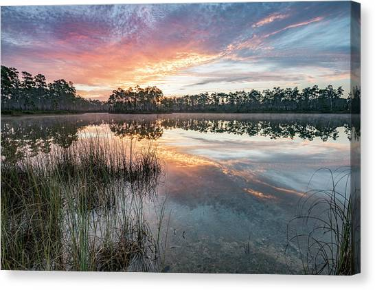 Everglades Canvas Print - A Rainbow Of Colors by Jon Glaser