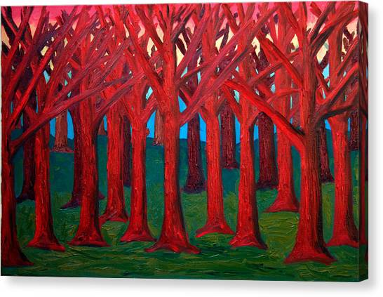 A Red Wood - Sold Canvas Print by Paul Anderson
