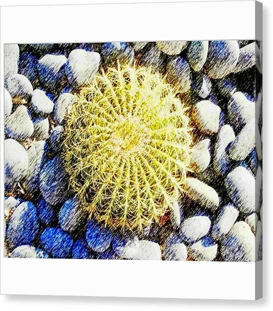 Desert Canvas Print - A Rocky by Karyn Robinson