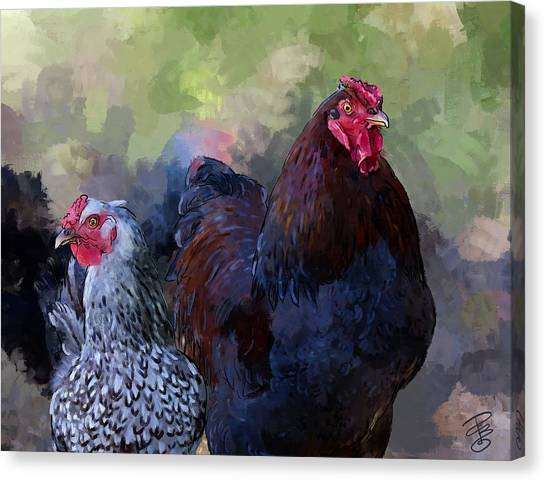 A Rooster And A Hen Canvas Print
