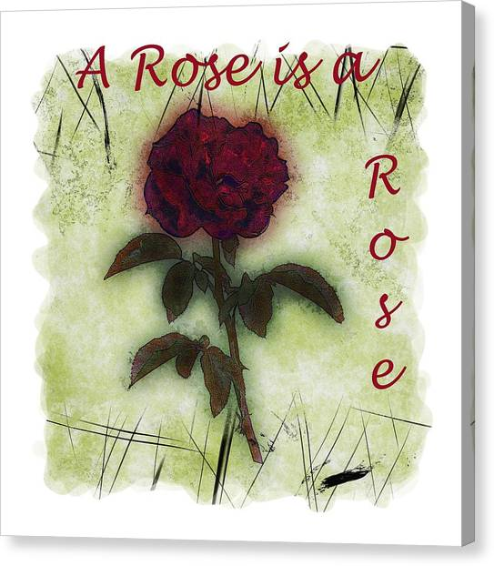 A Rose Canvas Print