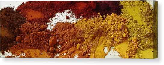 A Sandbox For Artists Canvas Print by Terrance DePietro