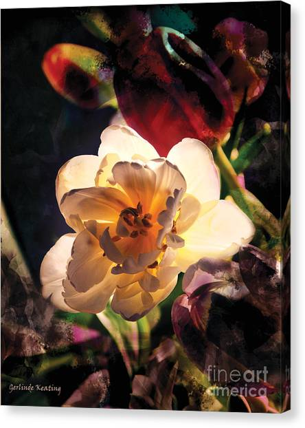 A Shining Beauty Canvas Print