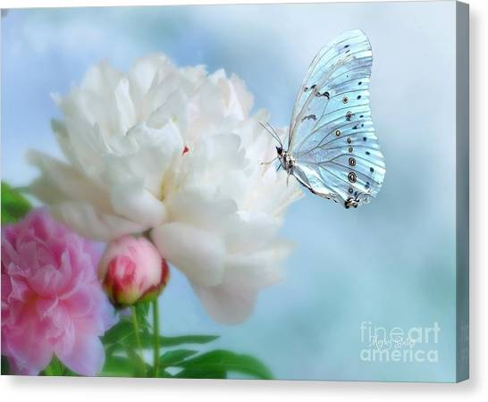 A Soft Landing Canvas Print