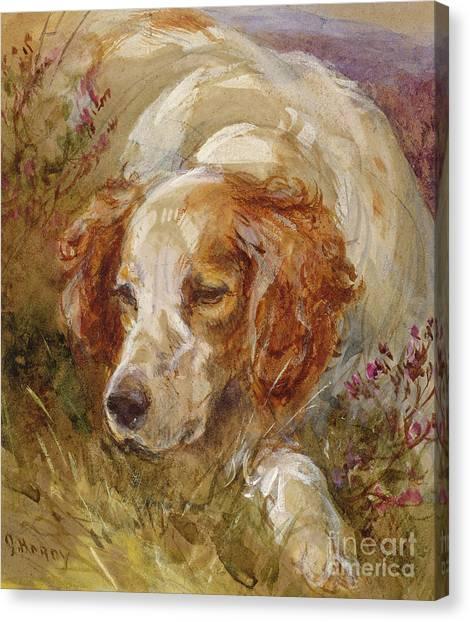 Watercolor Pet Portraits Canvas Print - A Spaniel by James Hardy Junior