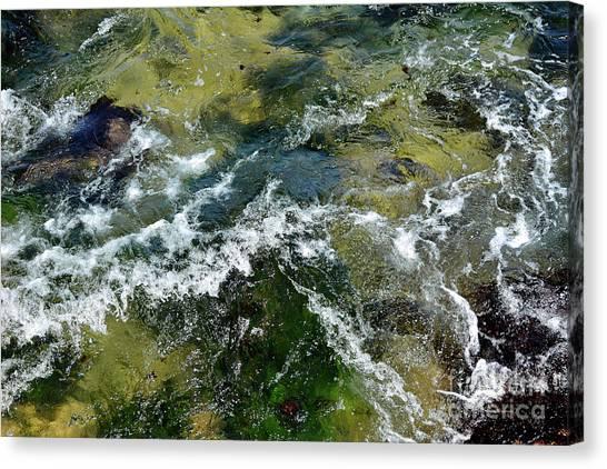 A Sparkling Ocean Palette Canvas Print
