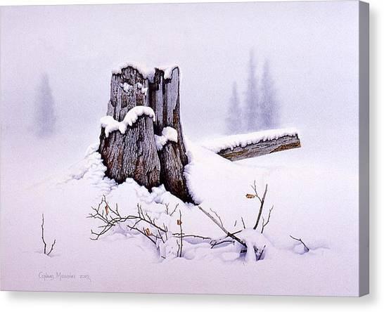 A Spiritual Experience Canvas Print by Conrad Mieschke
