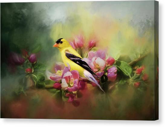 A Splash Of Joy Bird Art Canvas Print