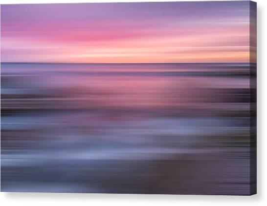 Lavendar Canvas Print - A Splash Of Orange X by Jon Glaser