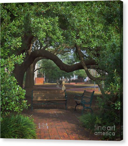 University Of South Carolina Canvas Print - A Spot To Dream by Skip Willits