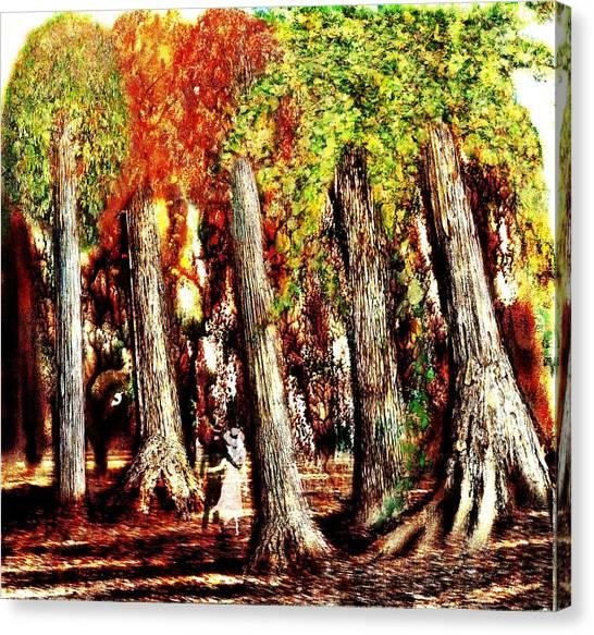 A Stroll Through The Woods Canvas Print by Mark Conrad