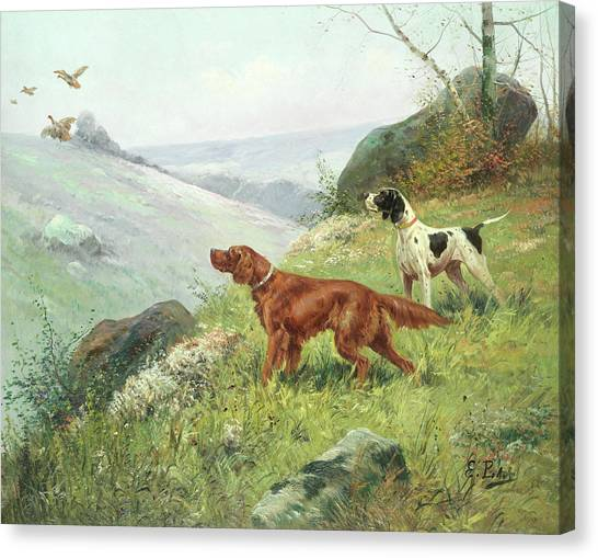 Quarterbacks Canvas Print - A Study Of Gun Dogs by Eugene Petit
