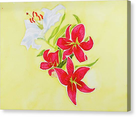 A Study Of Lilies Canvas Print