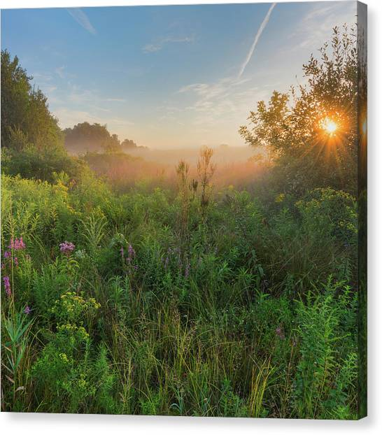 Sunrise Canvas Print - A Summer Morning 2016 Square by Bill Wakeley