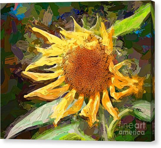 A Sunkissed Life Canvas Print