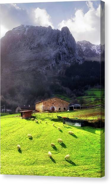 A Typical Basque Country Farmhouse With Sheep Canvas Print