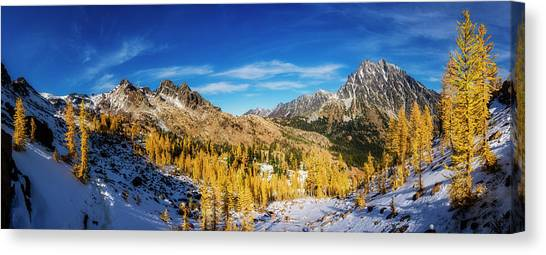 Larch Canvas Print - A Valley Of Larches by Pelo Blanco Photo