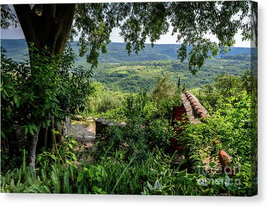 A View From Groznjan Of The Istrian Hill Town Countryside, Istria, Croatia Canvas Print