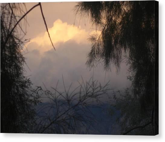 A View Canvas Print by John Wilson