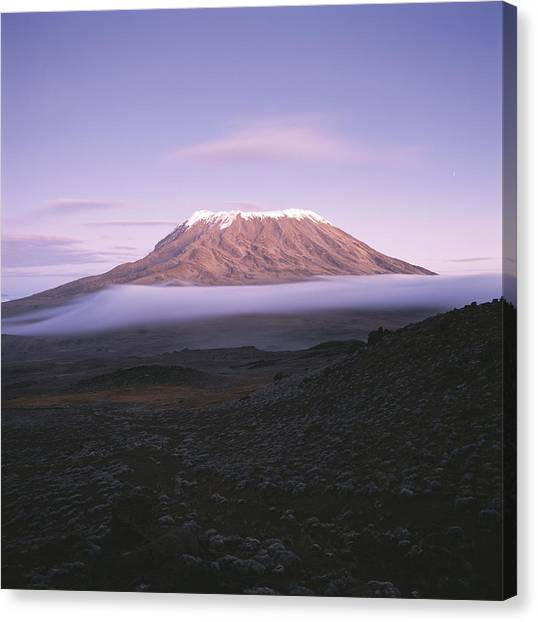 Mount Kilimanjaro Canvas Print - A View Of Snow-capped Mount Kilimanjaro by David Pluth