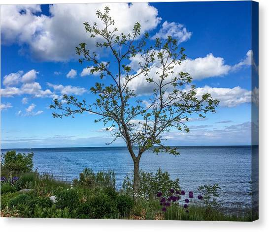 A Walk Along Lake Michigan Canvas Print