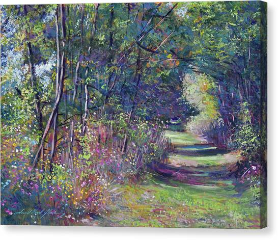 Forest Paths Canvas Print - A Walk In The Forest by David Lloyd Glover