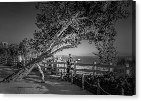 A Walk In The Park B And W Canvas Print