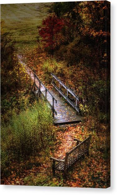 Woodland Walk Canvas Print - A Walk In The Park II by Tom Mc Nemar
