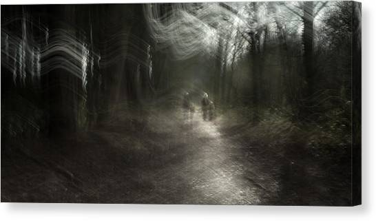 Nottinghamshire Canvas Print - A Walk In The Woods by Chris Dale