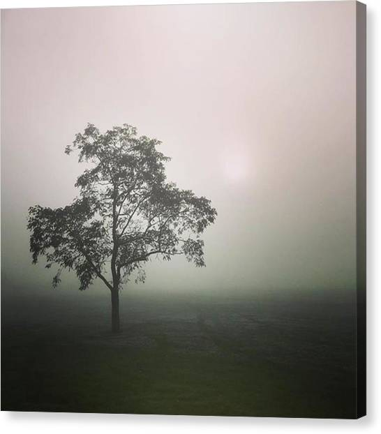 Canvas Print - A Walk Through The Clouds #fog #nuneaton by John Edwards