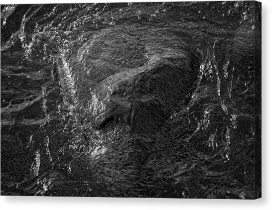 A Watcher In The Water Canvas Print by Robert Ullmann