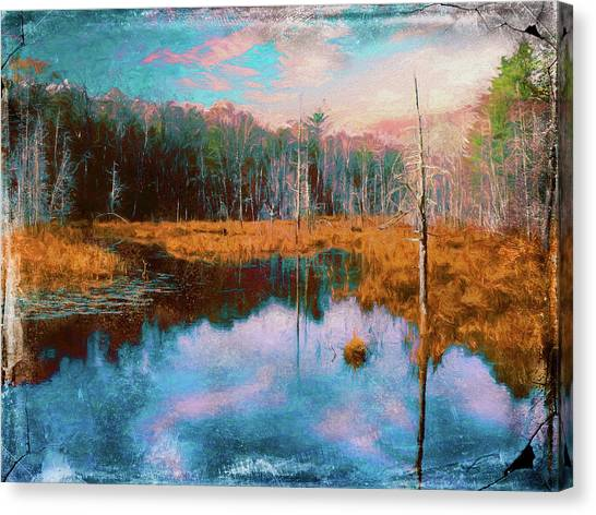 A Wilderness Marsh Canvas Print