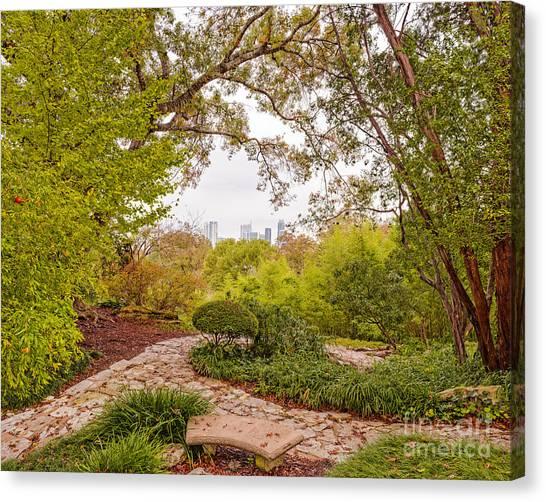 Gingko Canvas Print - A Window To Downtown Austin From Zilker Botanical Garden - Austin Texas Hill Country by Silvio Ligutti