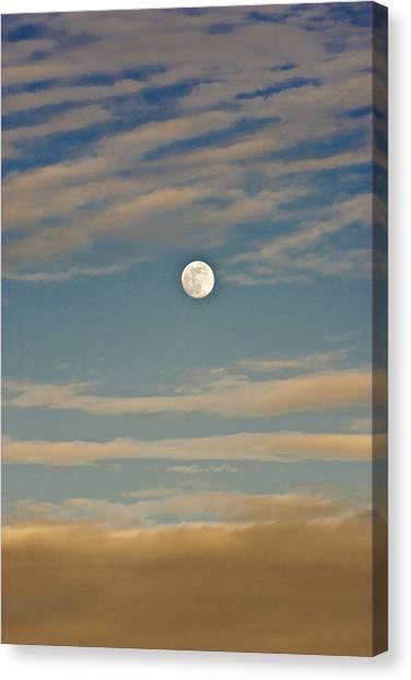 A Winter Moon Canvas Print