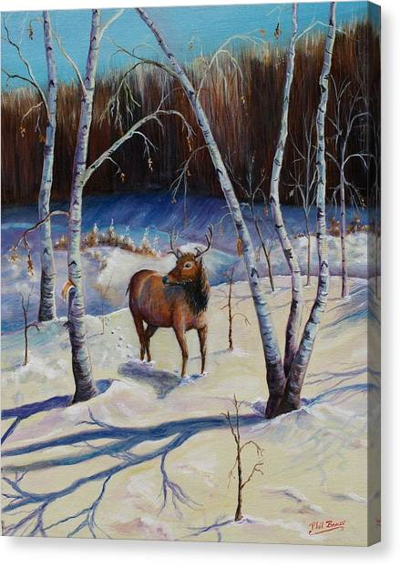 A Winter Morning Canvas Print
