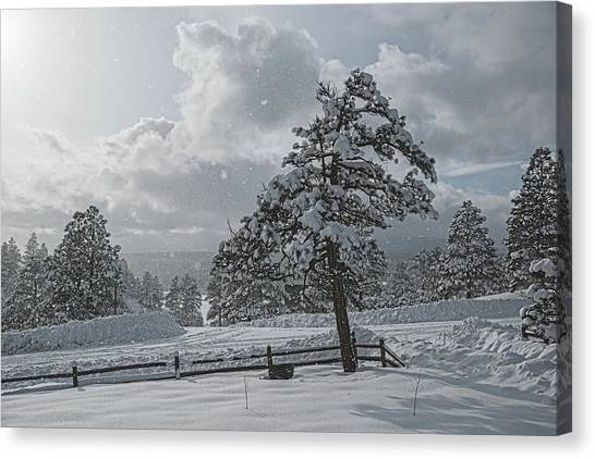 Canvas Print featuring the photograph A Winter Storm In Pagosa by Jason Coward
