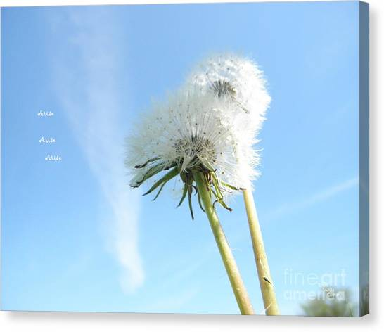 A Wish Blown Off To The Maker Canvas Print