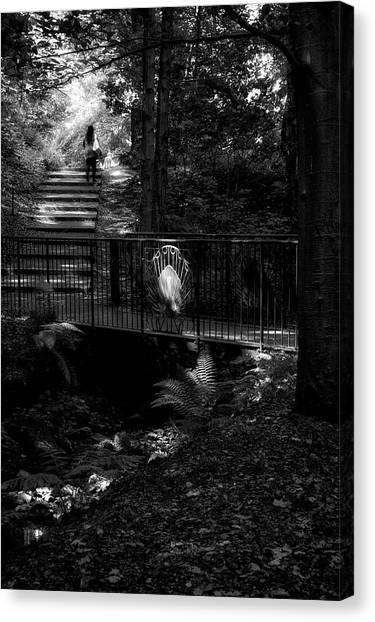 Canvas Print featuring the photograph A Woman Walking Her Dog At Pittencrieff Park by Jeremy Lavender Photography