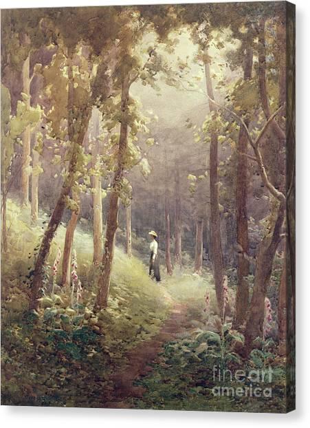 Forest Paths Canvas Print - A Woodland Glade by John Farquharson