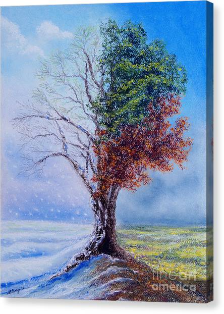 A Year In The Tree Of Life Canvas Print
